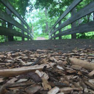 Duke Farms – Amazing Hidden Gem in New Jersey