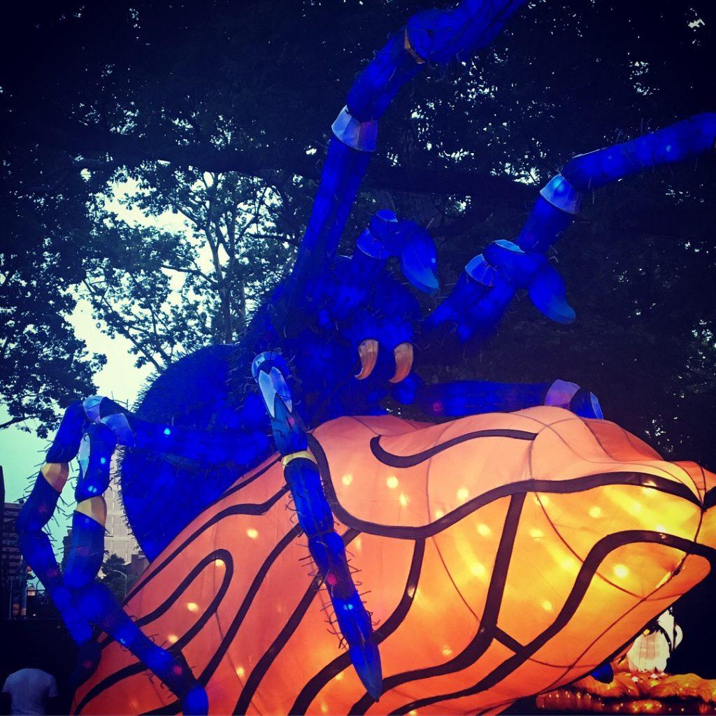 Giant spider lantern